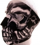 Assassin Skull Full Face mask