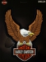 Large Brown Eagle HD patch